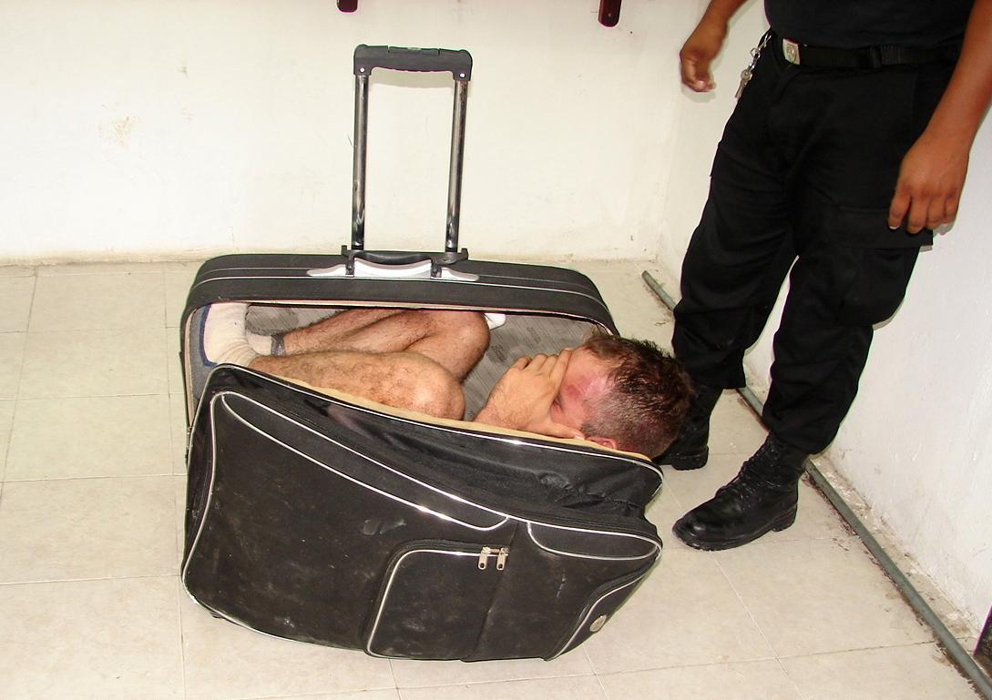 чемодан, забавное фото