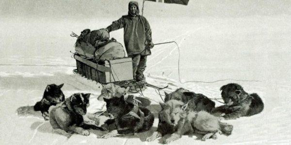 экспедиция Амундсена к Южному полюсу, собачья упряжка