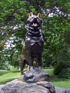 скульптура собаки Балто в Нью-Йорке, великая гонка милосердия