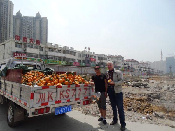 машина с мандаринами,Китай,торговля