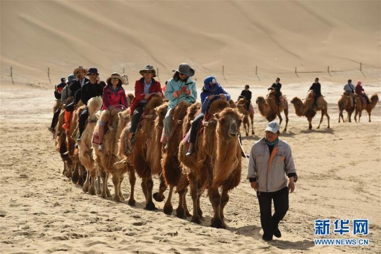 китайские туристы,караван верблюдов,Великий чайный путь