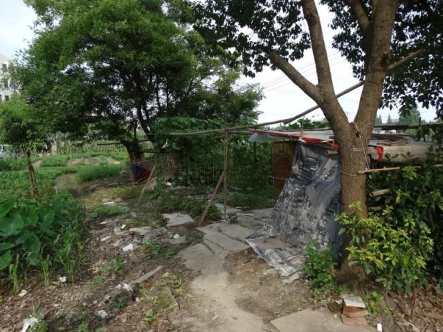 Шанхай,бедный дом