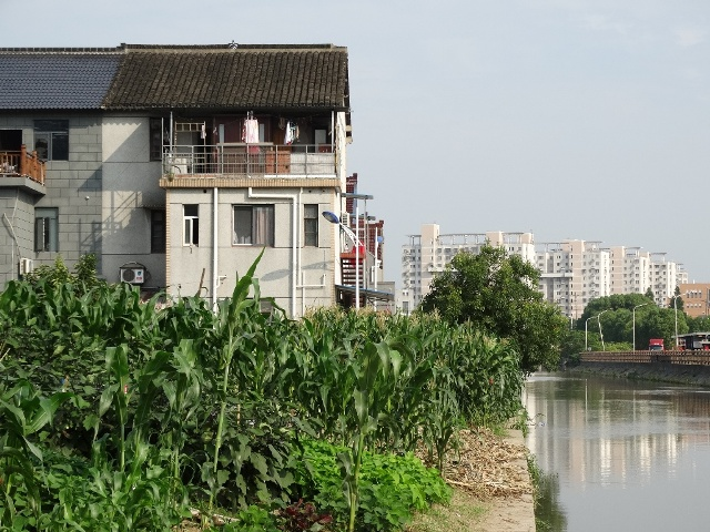 Шанхай,китайский дом,канал,посадки