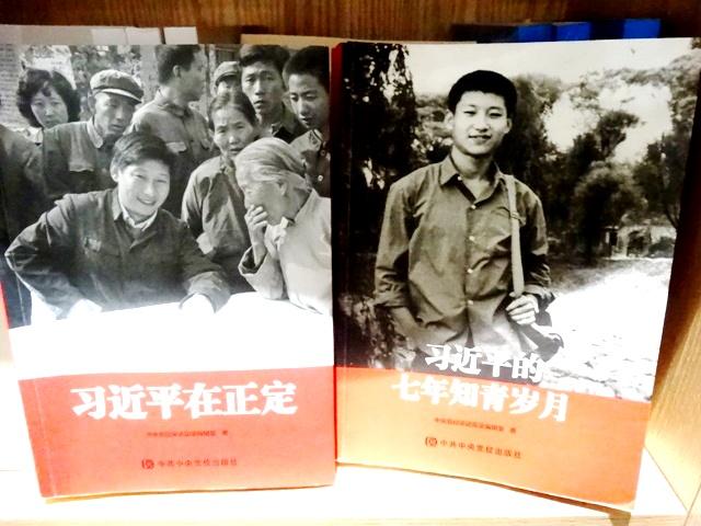 Си Цзиньпин книги