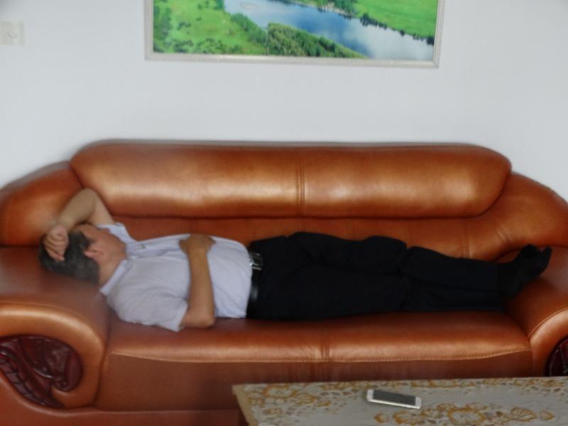 спит на диване