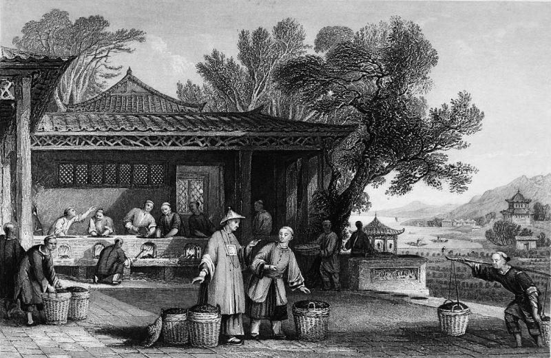 Чай Обработка старинная китайская картинка