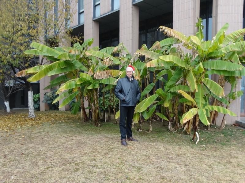 Аркадий в колпаке Санта-Клауса, пальмы. Новый год, Китай _