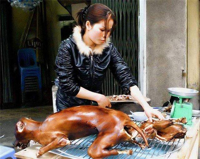 собачатина,китайский рынок